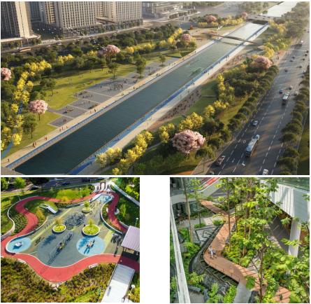 春雷乍动!陈砦拆迁改造工程唤醒郑州城市公园蝶变新时代